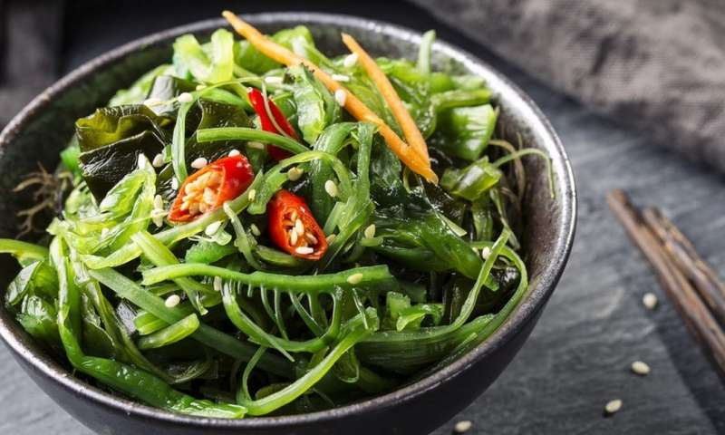 Putting algae and seaweed on the menu could save our seafood