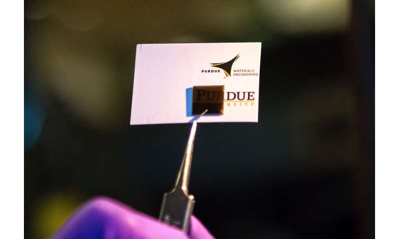 'Quantum material' has shark-like ability to detect small electrical signals
