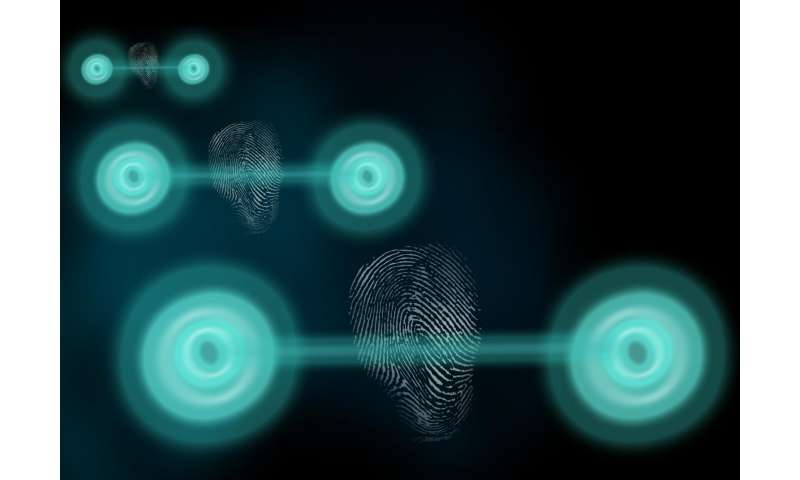 Quantum states reveal themselves with measurable 'fingerprint'