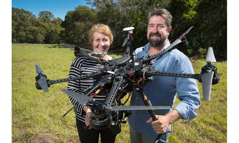 QUT to use drones to find and protect koalas