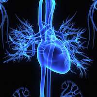 Readmission penalties don't correlate to heart attack outcomes