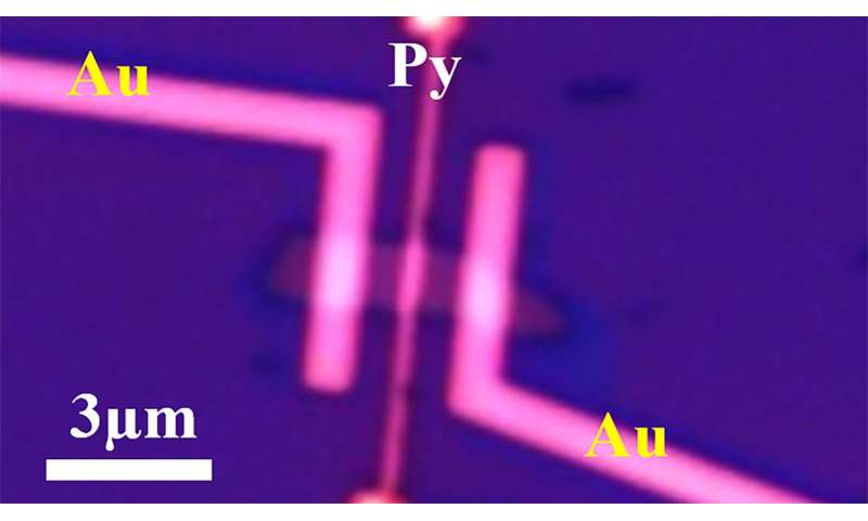 Rechargeable 'spin battery' promising for spintronics and