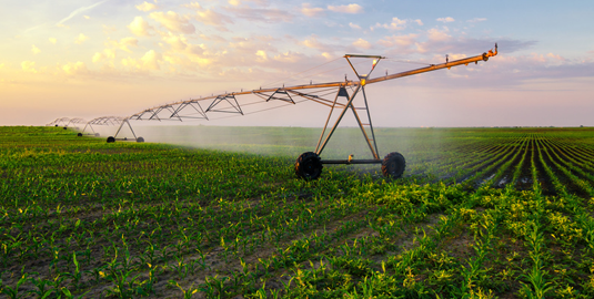 Reducing water use in agriculture