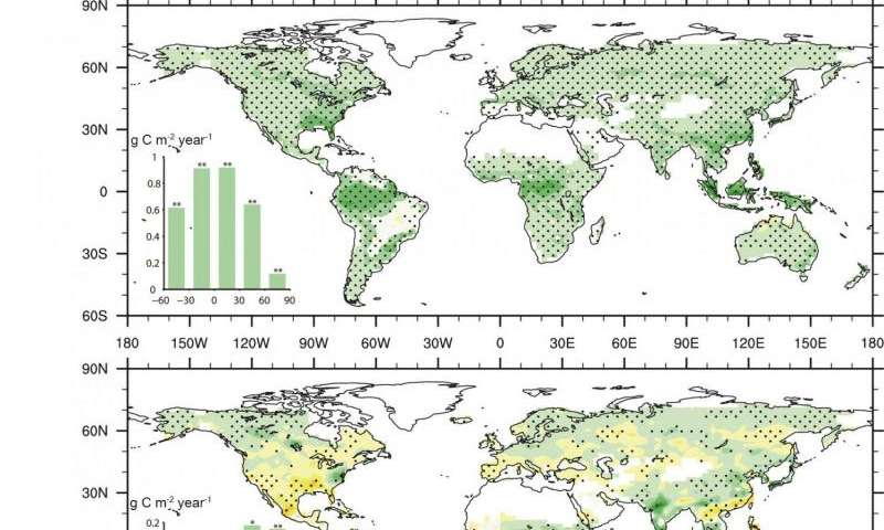 Rising CO2 due to climate change may not improve agriculture, model shows