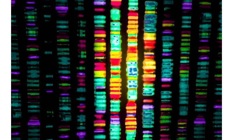 Safe and ethical ways to edit the human genome