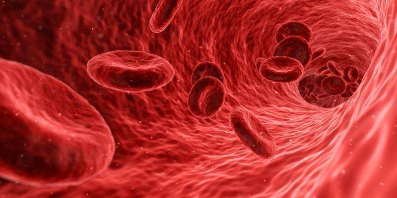 Scientists name 'Connshing syndrome' as a new cause of high blood pressure