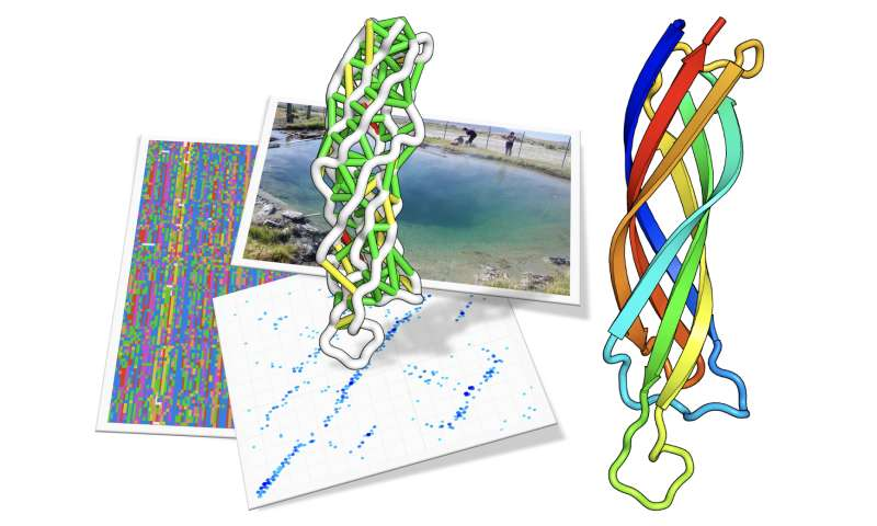 Seeking structure with metagenome sequences