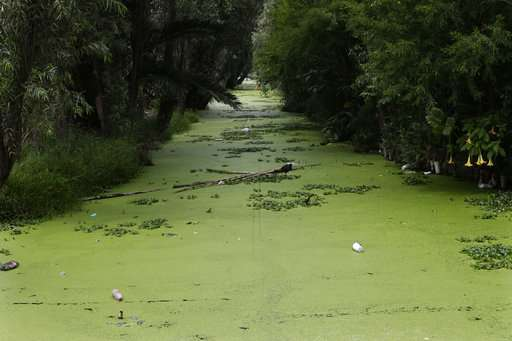 Sewage system failures plague Mexican tourist destinations