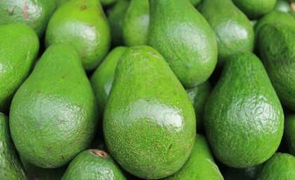 Smashing the avocado production bottleneck