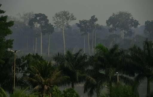 Smoke from deforested areas hangs in the air near Labrea in the Western Amazon region of Brazil