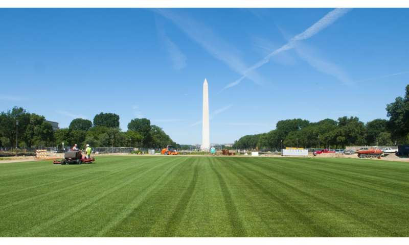 Soil microbes persist through National Mall facelift