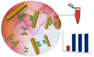 Solution of DNA and gold nanorods capable of six fundamental logic operations