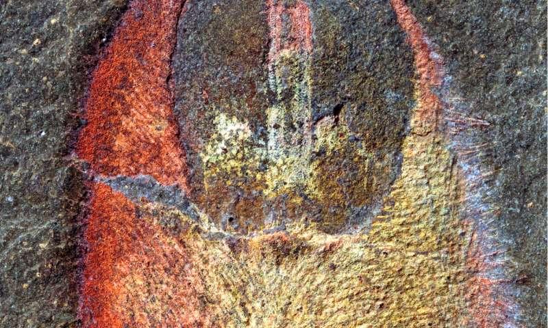 Spiny, armored slug reveals ancestry of molluscs