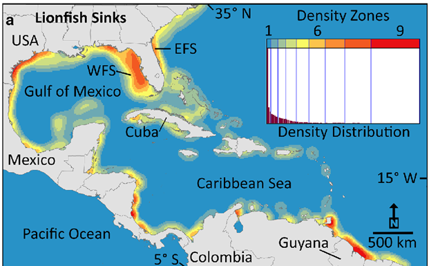 Spread of lionfish in the Gulf of Mexico is threat to reef fisheries