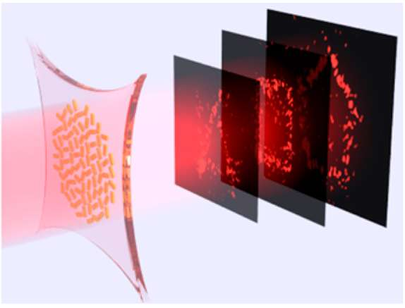 Stretchable hologram can switch between multiple images (video)
