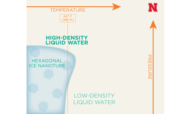 Study finds support for new forms of liquid water