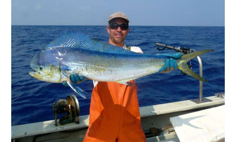 Study negates concerns regarding radioactivity in migratory seafood
