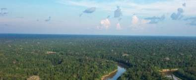 Study reinforces the Amazon forest's importance in regulating atmospheric chemistry