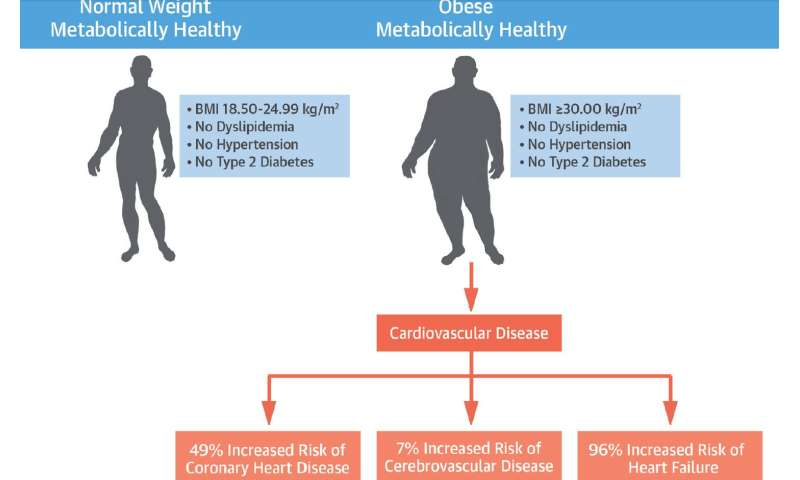 Study shows so-called 'healthy obesity' is harmful to cardiovascular health