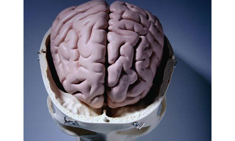 Subjective cognitive decline linked to global tau burden