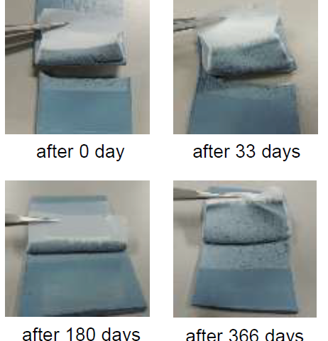Surprisingly long lifetime of high adhesion property of plasma-treated PTFE