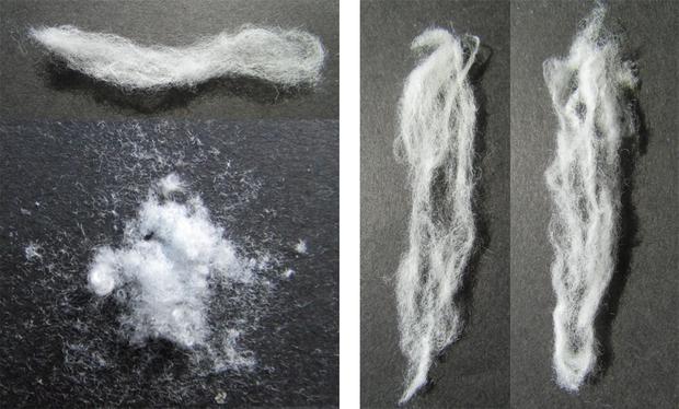 Technique could aid mass production of biodegradable plastic