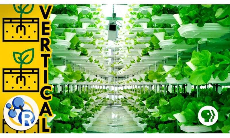 The farm of the future? (video)