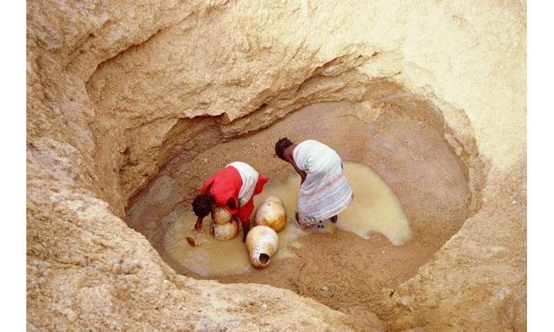 The immense challenge of desertification insub-Saharan Africa