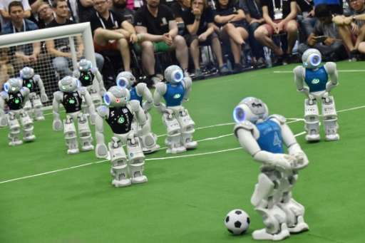 """The robots """"see"""" using a camera installed in their heads, while installed with artificial intelligence (AI) to recogni"""