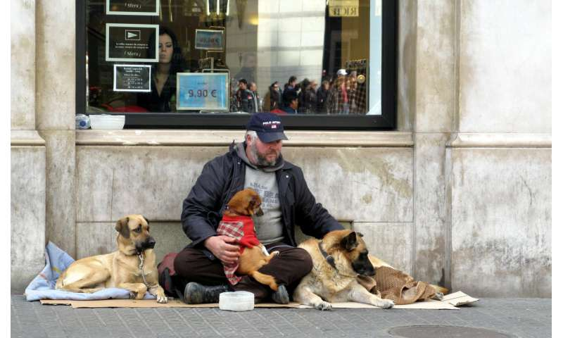The role of animal companions in the lives of homeless people