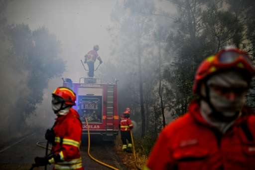 This year's fires in Portugal have been the deadliest the country has endured, killing 64 people and injuring more than 250