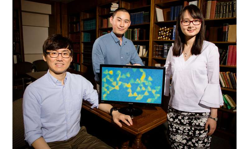 Tiny aquariums put nanoparticle self-assembly on display