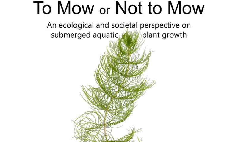 To mow or not to mow: Tackling nuisance growth of water plants at the root