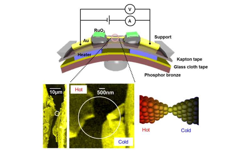 Tweaking thermoelectric voltage across atomic-scale gold junction by mechanical force