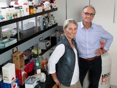 UA Cancer Center research team explores anti-breast cancer properties of soy