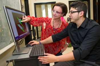 UAlbany study finds a novel target molecule to help prevent brain damage from hemorrhagic strokes