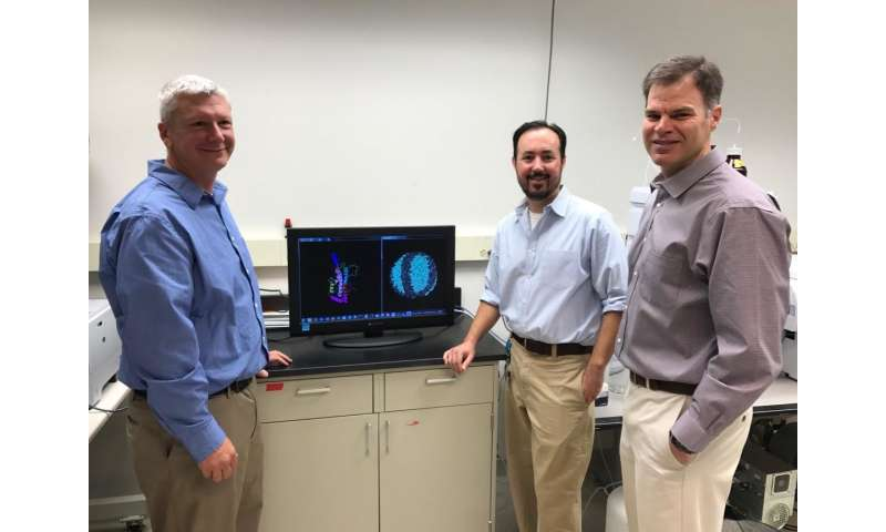 UC-led study could bring about strategies to increase 'good' cholesterol
