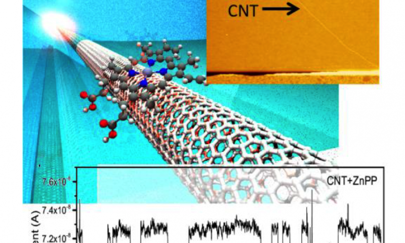 Unique noise signatures from single molecules interacting with carbon nanotube-based electronic devices