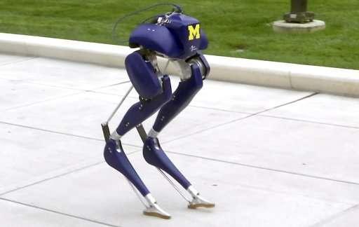 U. of Michigan expert puts bird-like robot through its paces