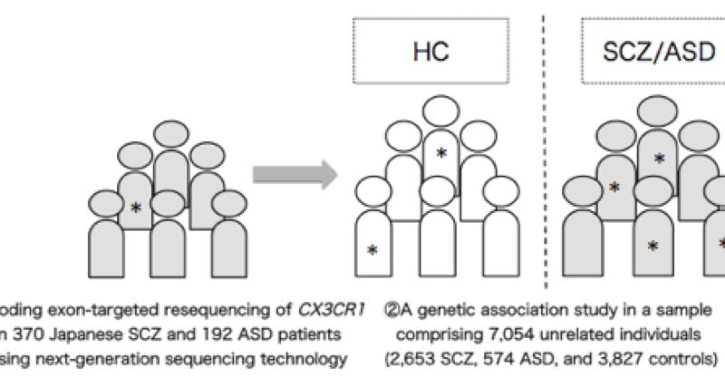 Using DNA to predict schizophrenia and autism