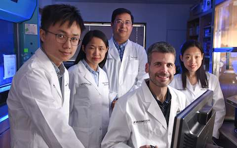 UTSW identifies ion channel necessary for hormone and anti-obesity drug to suppress eating