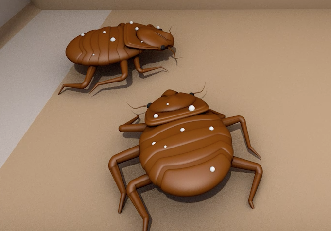 Video: Researchers find new solution to combat age-old bedbug problem