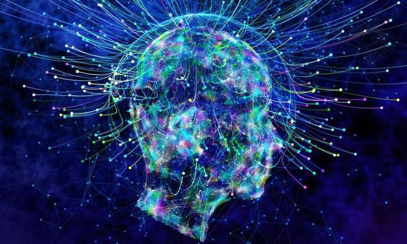 What if consciousness is not what drives the human mind?