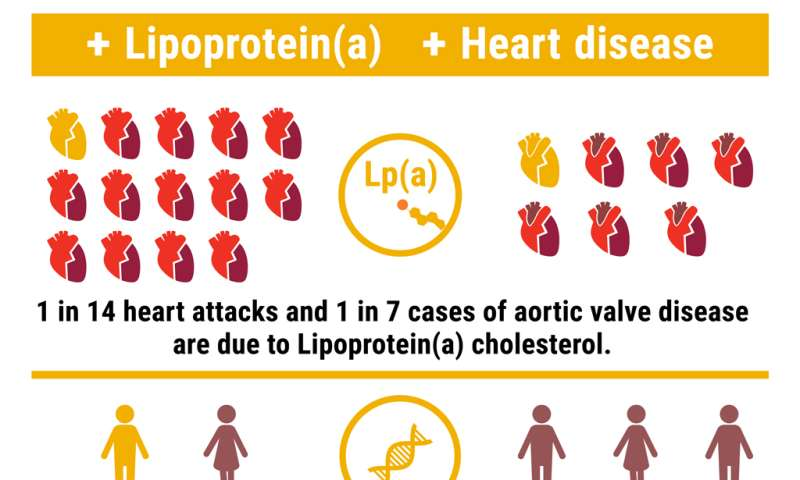 What is high lipoprotein(a), and should I be concerned?
