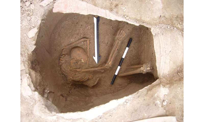 Who were the Canaanites? Ancient human DNA evidence yields answers