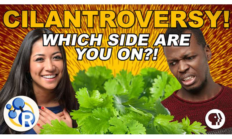 Why do some people hate cilantro? (video)