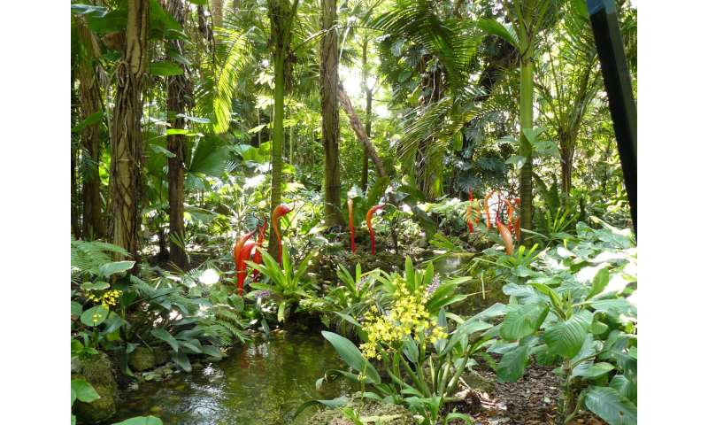 World's botanic gardens contain a third of all known plant species, and help protect the most threatened