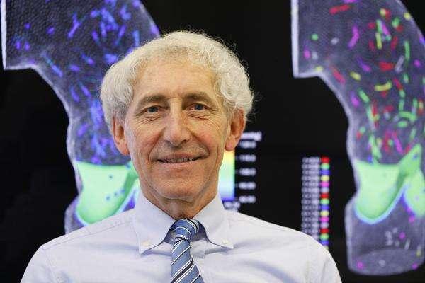 Your own virtual heart for non-invasive heart diagnostics