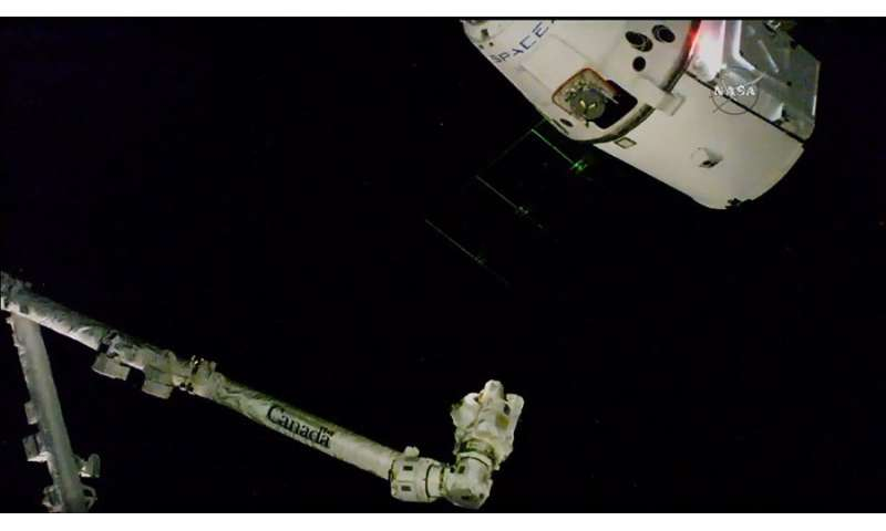 Zero gravity plant growth experiments delivered to space station