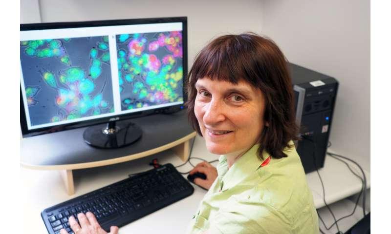 Advanced sensor to unlock the secrets of the brain